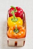 农业新鲜市场产品蔬菜 在红色篮子的三个甜椒,黄色 图库摄影