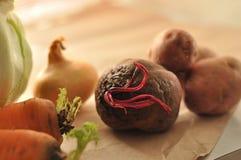 农业新鲜市场产品蔬菜 免版税库存图片