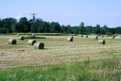 农业日被处理的域foto 免版税图库摄影