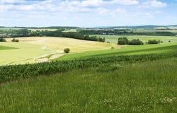 农业横向夏天 免版税图库摄影