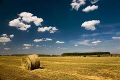 农业横向 免版税库存照片