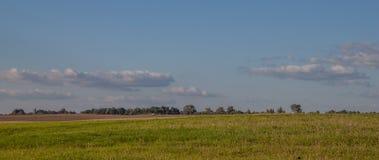 农业横向 图库摄影