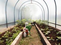 农业温室形状的隧道 免版税库存图片