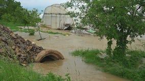 农业灾害,领域的充斥 影视素材