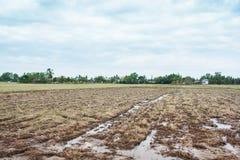农业的光秃的土地在侵蚀过程中在泰国 免版税图库摄影