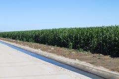 农业种田灌溉的运河沙漠 库存图片