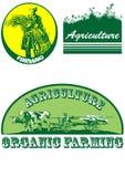 农业符号 免版税库存照片