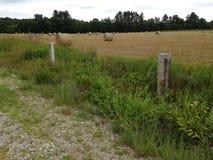 农业美好的干草横向卷 库存图片