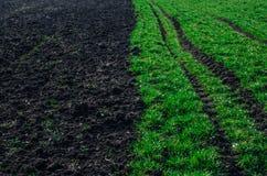 农业被收获的土壤一半 库存照片