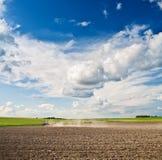 农业被清洗的域处理 图库摄影