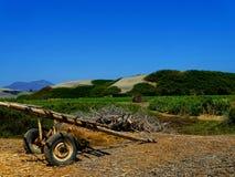 农业边境 图库摄影