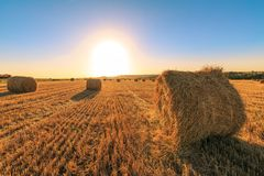 农业领域在收获麦子以后 在领域的日落与圆的干草堆 库存图片