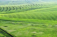 农业领域在春天 在视图之上 免版税库存图片