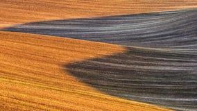 农业领域自然抽象背景  免版税库存照片