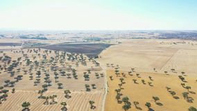 农业领域鸟瞰图在伊诺霍萨德尔杜克旁边的 股票视频
