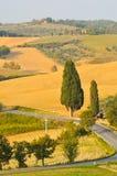 农业风景在托斯卡纳 库存照片