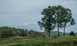 农业,风景视图 免版税库存图片