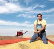 农业 图库摄影