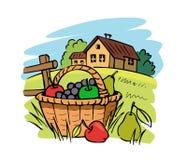 农厂在草的水果篮 免版税库存照片