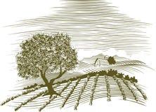 农厂场面木刻 免版税库存照片
