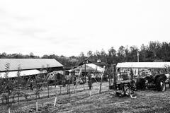 农厂场面 图库摄影