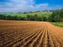 农厂堪萨斯麦子 免版税库存照片