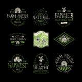 农厂新鲜和自然食物 免版税库存照片