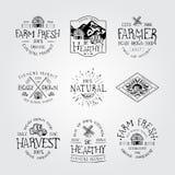 农厂新鲜和自然食物 免版税图库摄影