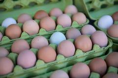 农厂新鲜的有机鸡蛋 库存图片