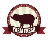农厂新鲜的猪肉 库存照片