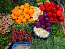 农厂新鲜的菜IV 免版税库存照片
