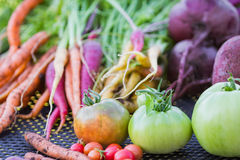 农厂新鲜蔬菜 图库摄影