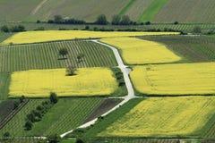 农厂风景从上面 免版税库存照片