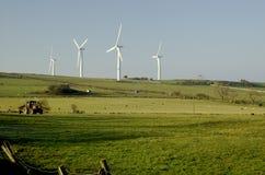 农厂风 库存照片