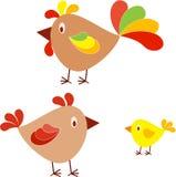 农厂鸟,鸡,母鸡,雄鸡,小鸡例证 库存照片