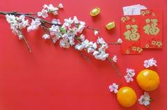 农历新年节日-红色金钱小包 库存照片