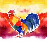 农历新年与红色雄鸡的卡片设计,黄道带标志2017年,在水彩火热的背景 图库摄影