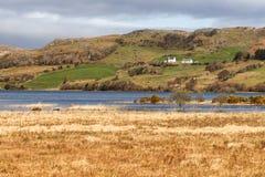 农场、湖和植被在西部方式足迹在港湾Corrib 免版税库存图片