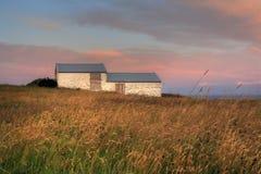 农场冰岛 库存照片