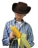 农场助手剥壳的玉米 免版税库存照片