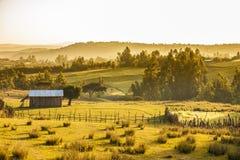 农场和山,埃塞俄比亚 库存图片