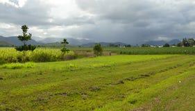 农场土地包括雷云。 免版税库存图片