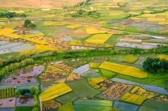 农场土地在辉县市 免版税图库摄影