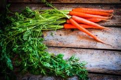 农场在木背景的被扶养的有机红萝卜 免版税库存照片