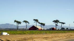 农场在沙漠 免版税库存图片