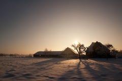 农场在荷兰多雪的冬天 免版税库存图片