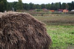 农场的一个干草堆 库存图片