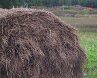 农场的一个干草堆 免版税图库摄影