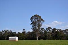 农场的一个房子 免版税库存图片