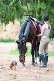 农场的三个最好的朋友 骑马术学校 免版税库存图片